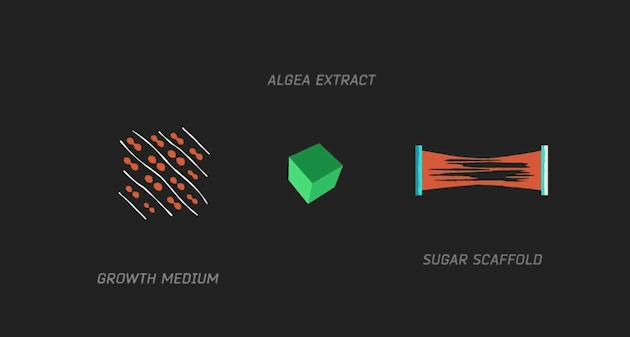 Algea Extract