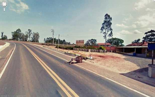 En Korkunç 10 Google Sokak Görünümü Fotoğrafı