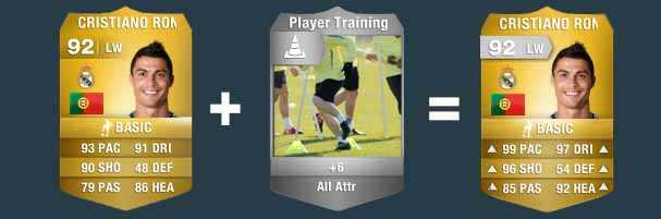 Training, Fitness ve Staff kartları