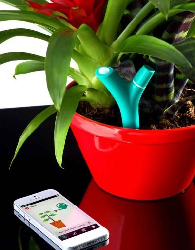 Parrot Flower Power Bitki Bakım Sensörü Testte!