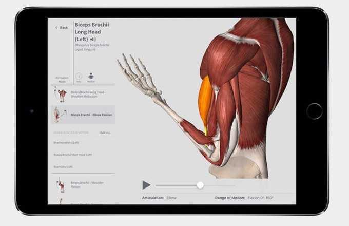 1_complete-anatomy