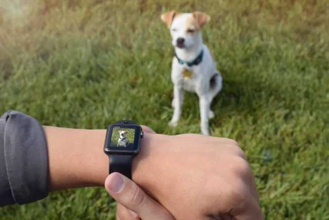 Apple Watch için Kameralı Kordon